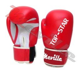 6 Boxing Glove